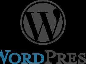代码实现WordPress 在文章内容的随机段落中间插入广告
