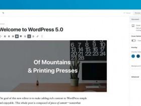 WordPress5.0新版编辑器换回旧版本编辑器方法