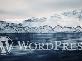 WordPress前台显示登录用户的最后登录时间