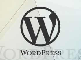WordPress 评论中嵌入图片