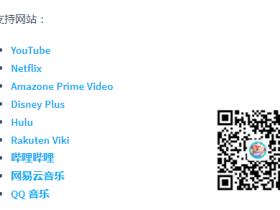 DualSub - YouTube双语字幕插件