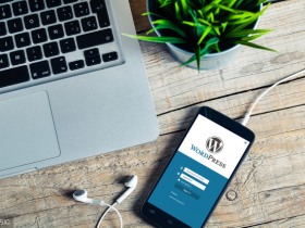 如何查看网站是不是用的WordPress创建的,以及使用的主题是什么?