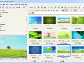 FastStone Image Viewer-图片浏览器